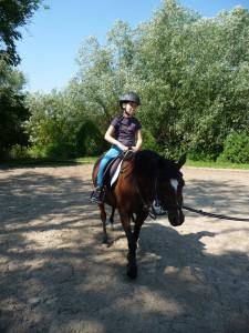 Pony_tabor